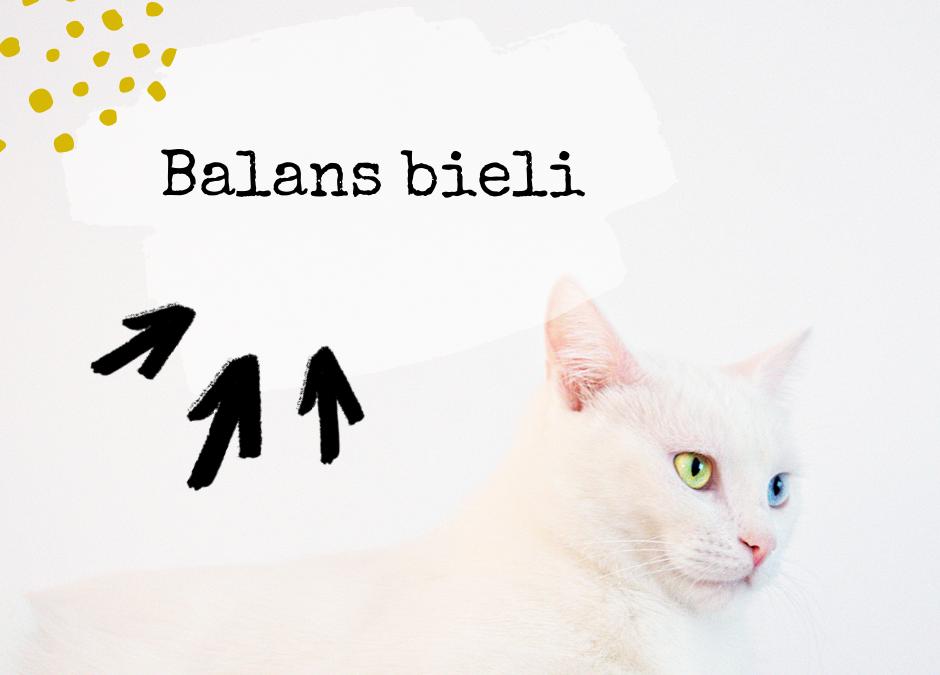 Balans bieli, czyli dlaczego białe nie jest na zdjęciu białe?